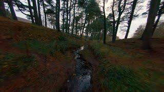 Relaxing FPV flight along a stream in Scotland - Beta95x & Naked GoPro Hero 6