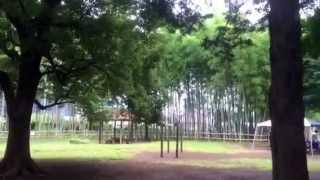 たけのこ公園のイメージ