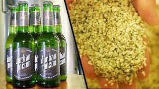 Beer Company Brews With Hemp Instead of Hops