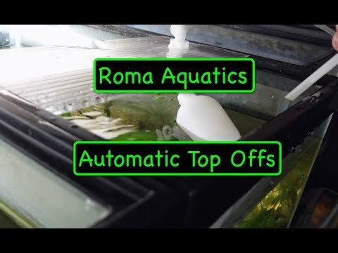 Automatic Aquarium Water Top Off - How To - Start of Maintenance Free Room - Float Valves and RODI