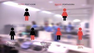 La compatibilidad genética en la pareja - Instituto Bernabeu