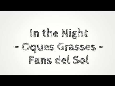 In the night - Oques Grasses amb lletra