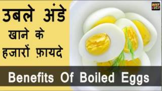 अंडे और इसके फायदे | Health Benefits Of Egg | Health Tips In Hindi - Download this Video in MP3, M4A, WEBM, MP4, 3GP