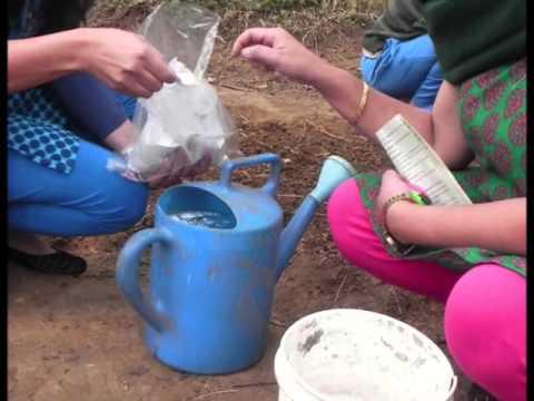Milyen gyógyszert adni a gyermekeknek férgek számára