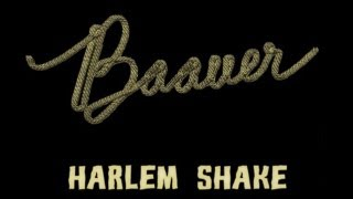 Baauer - Harlem Shake (Original) [Official Lyrics Video | HD/HQ]