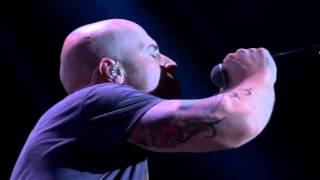 Daughtry - We're Not Gonna Fall Sub
