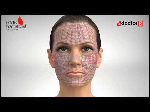 Örümcek Ağı Estetiği 3D - Estetik International