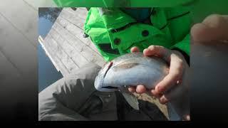 Рыбалка в кызыл озеке