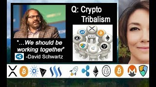 David Schwartz Podcast on Ripple, XRP the  Digital Asset & Cryptocurrency Tribalism