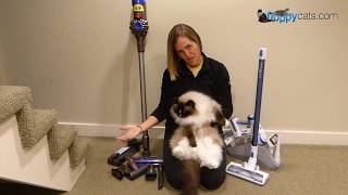 Best Cordless Stick Vacuum Cleaners 2019: Tineco A10 Hero vs. Dyson V8 Animal Comparison Video