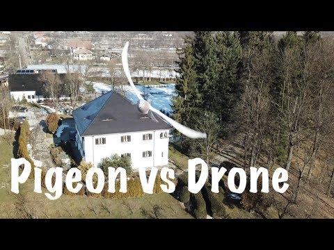 Ultimul zbor al dronei mele - Conacul lui Maldar