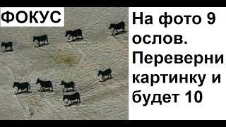 Алексей Сова тут https://www.youtube.com/channel/UCPtvMkIrTcw9cvdaFqATpYQ/?sub_confirmation=1  По вопросам сотрудничества: maxmaximov@wildjam.ru