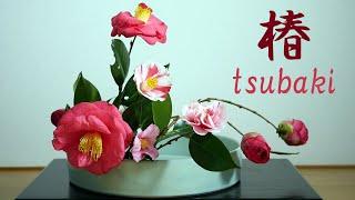 【生け花】Ikebana Using Only Camellia【ikebana】池畔仅使用山茶花/Икебана, используя только камелию/数種類の椿を使って  꽃꽂이