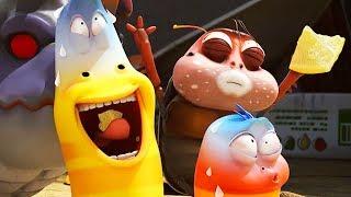 LARVA - LEMON SLICE | Cartoon Movie | Cartoons For Children | Larva Cartoon | LARVA Official