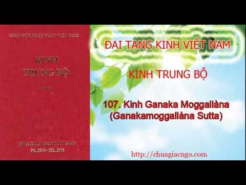 Kinh Trung Bộ - 107. Kinh Ganaka Moggalana