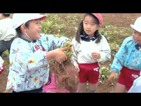 Oiwake Kindergarten