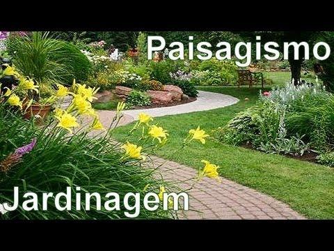 Dicas de profissionais em jardinagem