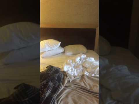 PLAZA HOTEL & CASINO Las Vegas Deluxe room review