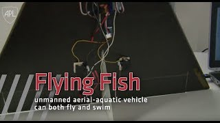 Newswise:Video Embedded water-and-air-flying-fish-uaav-can-go-anywhere