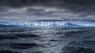 Grow Till Tall - Jónsi (English and Spanish lyrics) (Subtitulado en español e inglés)