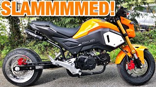 honda grom stretched - TH-Clip