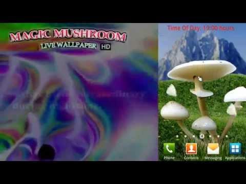 Video of Magic Mushrooms LWP HD