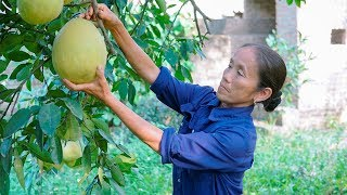 Mẹ Sáng Tạo Các Món Ăn Từ Trái Bưởi Mang Đậm Đà Hương Vị Quê Hương | Ẩm Thực Bà Tân