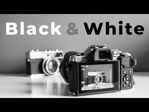 black and white photography 5 things why b&w photography will make you a better photographer