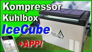 GUTE und GÜNSTIGE Kompressor Kühlbox 2021? IceCube bis 50L mit APP ❄️ Plugin Festivals Test Review
