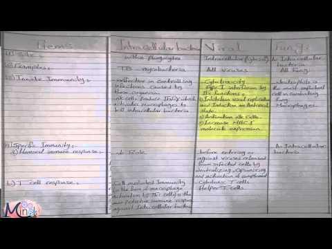 Parasites sa mga bata sa mga larawan