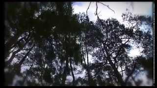 preview picture of video 'Nuevo Monasterio de San Juan de la Peña'