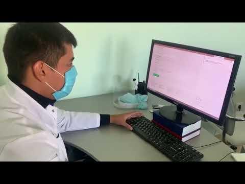 Как прикрепиться к поликлинике: пошаговая инструкция