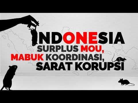 Indonesia Surplus MOU, Mabuk Koordinasi, Sarat Korupsi