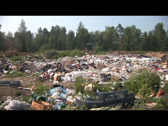 Город избавят от мусора
