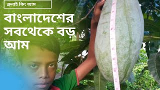 preview picture of video 'বড় আম ( Big Mango)'