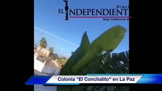 Balacera en la colonia El Conchalito de la Capital del Estado
