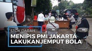 Stok Darah Menipis, PMI DKI Jakarta Jaring Pendonor ke Permukiman Warga