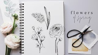 How To Draw Flowers   Step By Step Hyacinth, Magnolia And Ranunculus