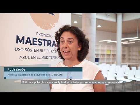 Ruth Yagüe, Analista-Evaluación de proyectos de I+D en CDTI[;;;][;;;]