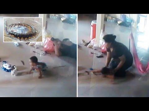 تايلاند :  نجاة طفل من أم 44