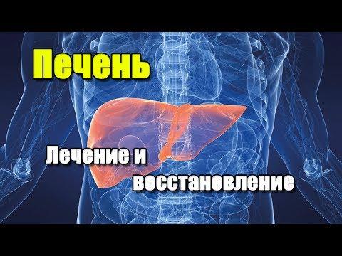 ГЕПТРАЛ И ЭССЕНЦИАЛЕ | ПЕЧЕНЬ. Лечение и восстановление печени.