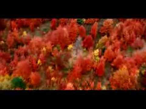 "Pure Michigan Fall ""Trees"""