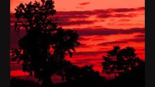 The Dresden Dolls- God Damn the Sun (Swans cover) live