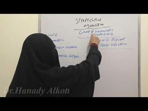 Hogyan kell csinálni a namaz-ot prosztatagyulladás esetén