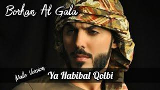 Ya Habibal Qolbi Lirik - Male Version - Borkan Al Gala