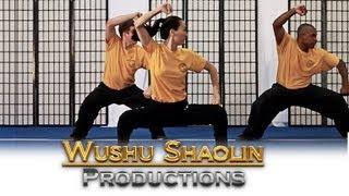 Wushu Shaolin Kung Fu Online Distance Education Course 2012 Free Tutorial