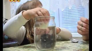 Смотреть онлайн Опыты на кухне для детей, чем занять ребенка
