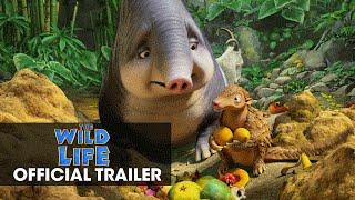 The WIld Life (2016) Video