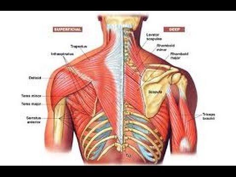 Hipertenzija suprotnom masaža