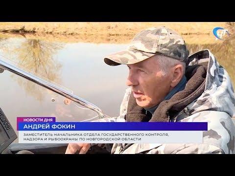 Новгородская рыбоохрана продолжает рейды по браконьерам
